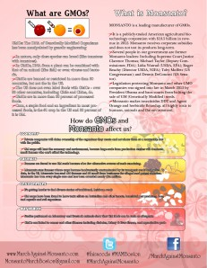 MAMBoston Info Flyer 2